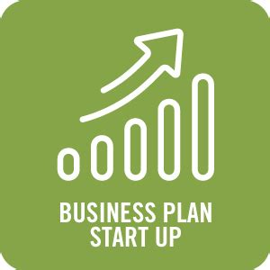 Auditing and Consulting Business Plan Entrepreneur
